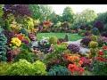 Gambar cover Mój piękny ogród -  20 czerwca 2020