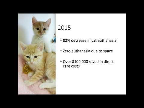 Saving Lives and Reducing Expenses through Low- and No-Fee Cat Adoptions