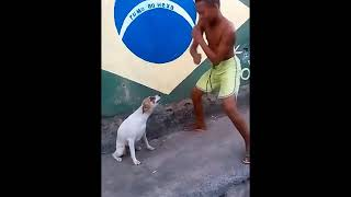 Lol lol Dog dance with kid