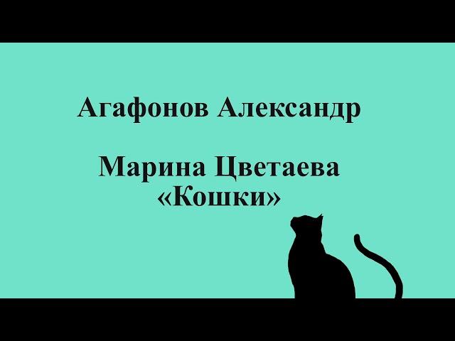 Изображение предпросмотра прочтения – АлександрАгафонов читает произведение «Кошки» М.И.Цветаевой