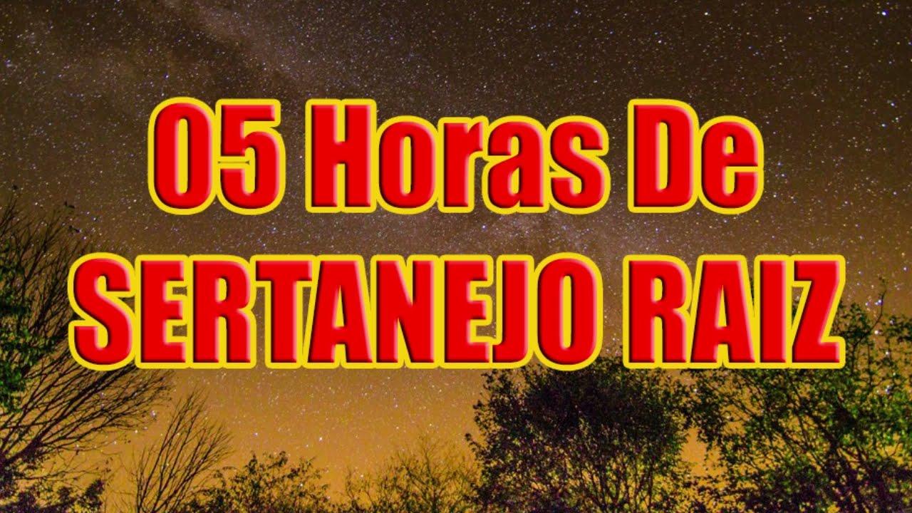 05 Horas De SERTANEJO RAIZ