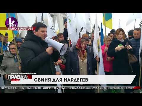 НТА - Незалежне телевізійне агентство: До Верховної Ради принесли…свиню: так люди протестували проти відкриття ринку землі