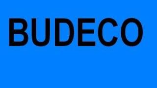 BUDECO Профессиональное утепление фасадов Запорожье частных домовнедорого низкие цены(