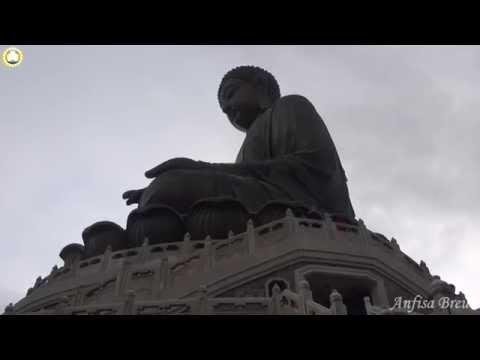 буддизма их с и значение символы картинками
