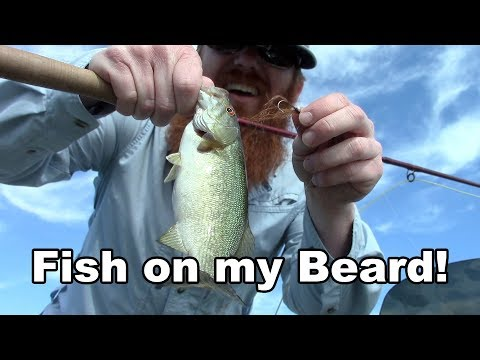Man Uses His Own BEARD To Catch Fish - Bass Fishing - McFly Angler Fly Tying
