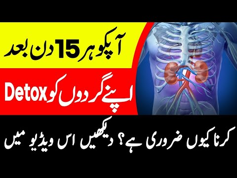 Why it's Essential to Flush Kidneys Toxins after Every 15 Days?  - Kidney Detox Home Remedy