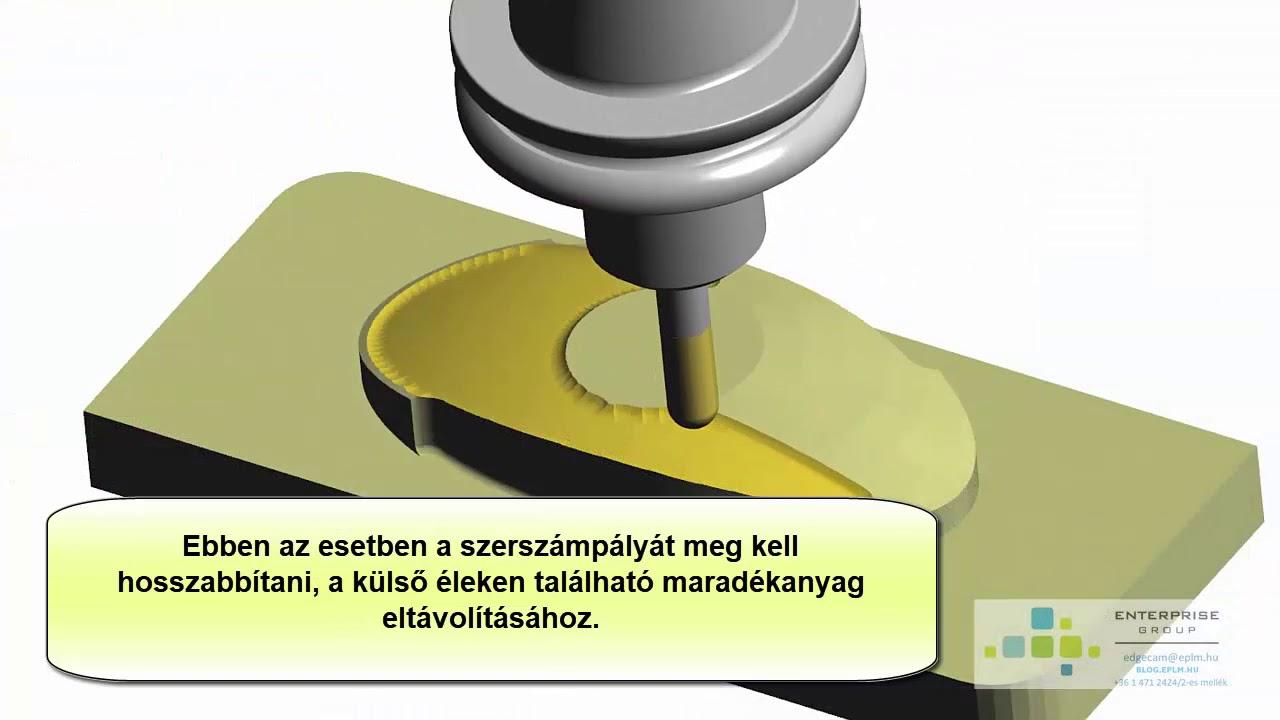 Ascaris fejlesztési folyamat)