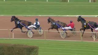 Vidéo de la course PMU PRIX DE LA HOLLANDE