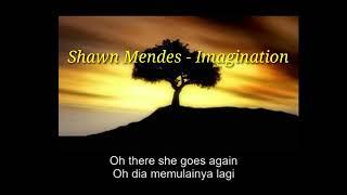 Shawn Mendes - Imagination (Lirik cover gitar) versi girls terjemah bahasa indonesia
