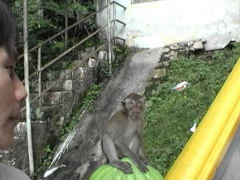 Malaysia Bata Caves  黑風洞