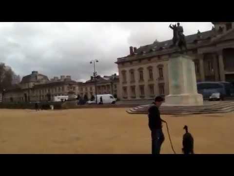 Здание парижской военной школы (Paris military school)