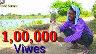 Kukdi Comedy Video  😂Viral // Banjara Kukdi Comedy😂 // Hen  Fish Vinod Kumar