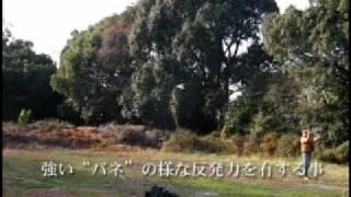 HS/HL練習用バンブーロッド