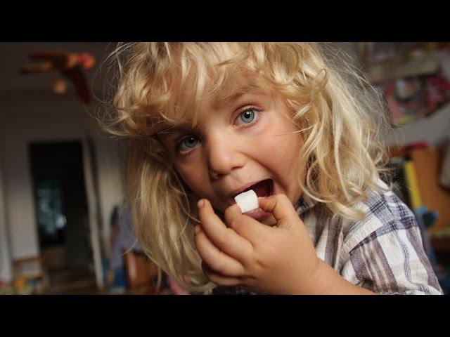 砂糖と健康について考えてみよう!映画『シュガー・ブルース 家族で砂糖をやめたわけ』予告編