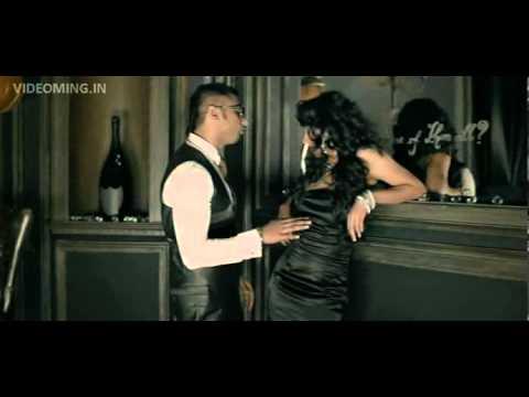 Brown Rang Yo Yo Honey Singh) HD(videoming in)