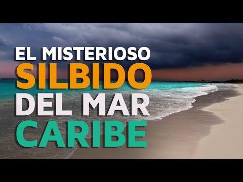 El misterioso SILBIDO del Mar Caribe