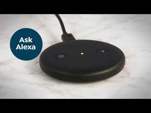 hook up alexa dot to speakers