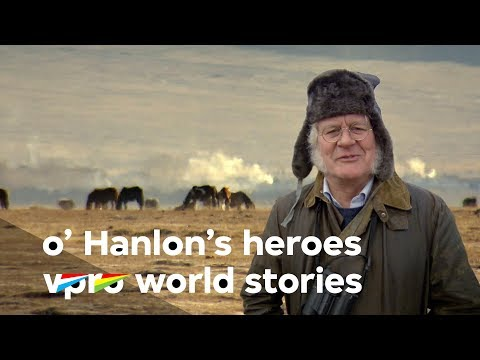 In the steps of Przewalski in Asia - O'Hanlon's Heroes