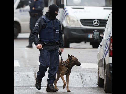 K9 Diesel RIP  France  Paris  RAID  video Special Forces France K9