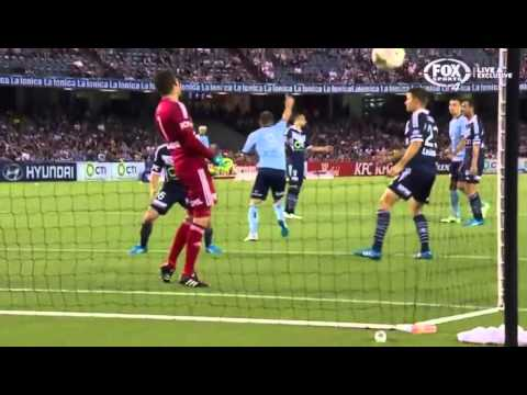 Shane Smeltz 2015 Sydney FC Goals video