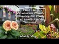 Plant Haul || Planting Pitcher Plants || Shopping At Lowes || Garden Chat