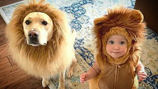Funny Animals! Cute Funny Animals Video Compilation #24