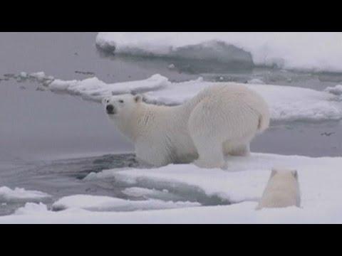 North Pole hots up as El Nino shakes up world weather