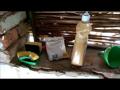 горчица для мытья посуды/ экологически чистое моющее средство