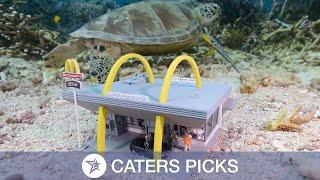 Artist Creates Miniature Underwater Scenes