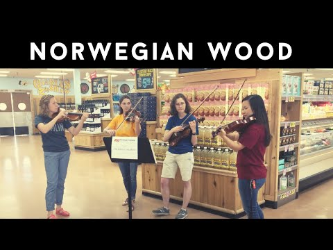 Norwegian Wood ~ The Middle Children TRADER JOES