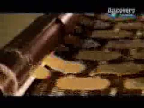 Elaboración de Papas Pringles
