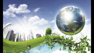 видео Законы экологии все связано со всем