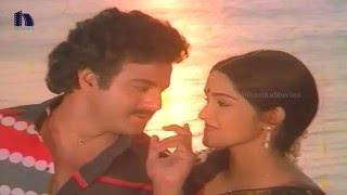 Seetharama Kalyanam Back To Back Video Songs || Balakrishna, Rajani, KV Mahadevan