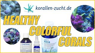 Robert's Secret Sauce From Korallen-Zucht For Growing Healthy & Colorful Corals