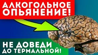 6 СТАДИЙ опьянения ВОТ ЧТО будет с организмом если ты не остановишься