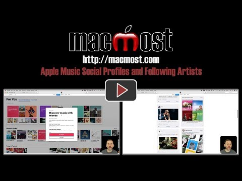 Apple Music Social Profiles and Following Artists (#1509)