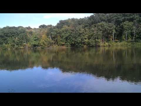 Video Recording Using Samsung Fascinate 1280x720  Mill Creek Park Youngstown, Ohio
