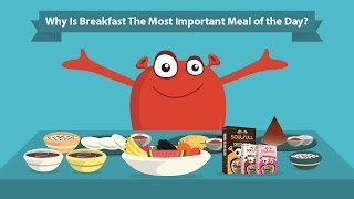 Ever wondered why your mother always insisted on having breakfast each morning? you keep craving for junk food all day at work? the answer ...