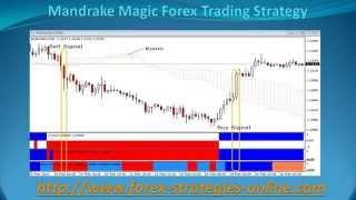 Mandrake Magic Forex Trading Strategy