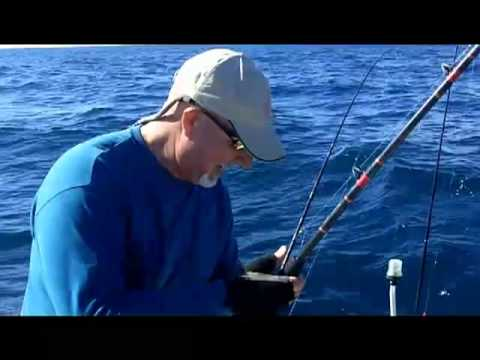 Offshore SLAM + Kingfish, Wahoo, Dolphin - South Florida Winter fishing