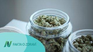 Je marihuana návyková?