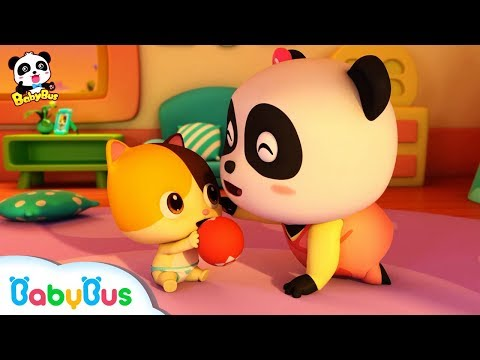 ❤ Baby Kitten Care | Kids Songs collection & Nursery Rhymes | BabyBus