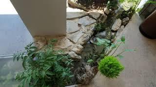 귭 #카페  #cafe  헤이마 실내 벽천