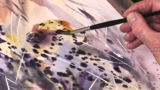 Going Wild In Watercolour  With Jake Winkle Trailer Official Trailer