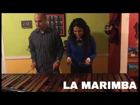 MEET CARLOS & LA MARIMBA in MIAMI