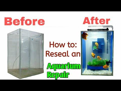 How  to Repair Leaking broken cracked Aquarium Tank DIY | fish tank kaise banaye, aquarium kaise ban