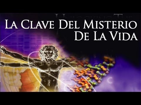 ª» Streaming Online La Clave Del Misterio De La Vida (Unlocking the Mystery of Life - Spanish)