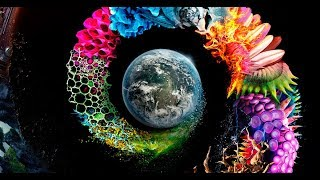 National Geographic - Непознатата Планета S01E10 HDTV 1080p x264