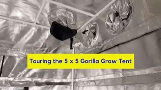 Assembled 5x5 Gorilla Grow Tent | Hobby Bobby