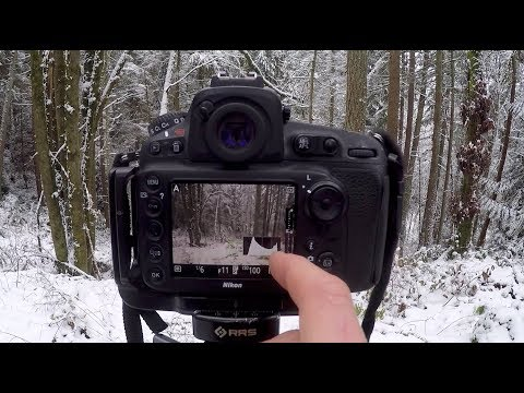 My SHARP FOCUS Technique - Back Button Focus & Hyperfocal || The Landscape Photography Journals E6